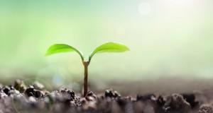 肥料製造メーカー